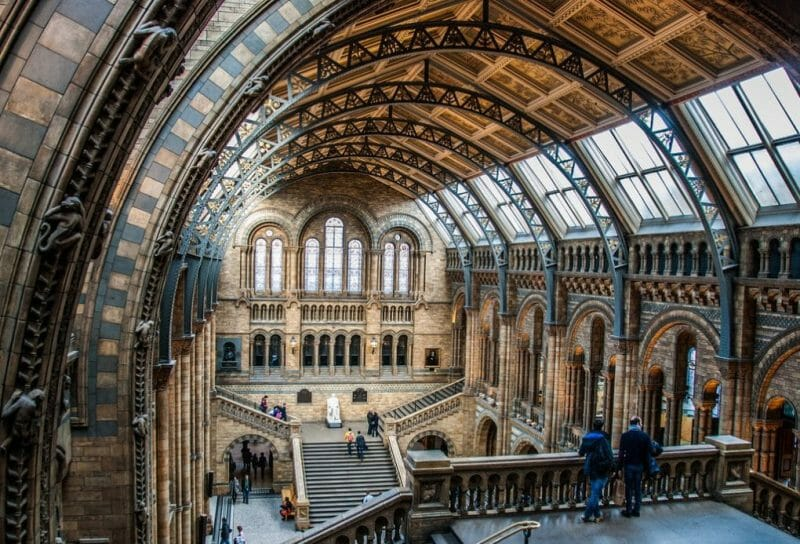 natural history museum london photo
