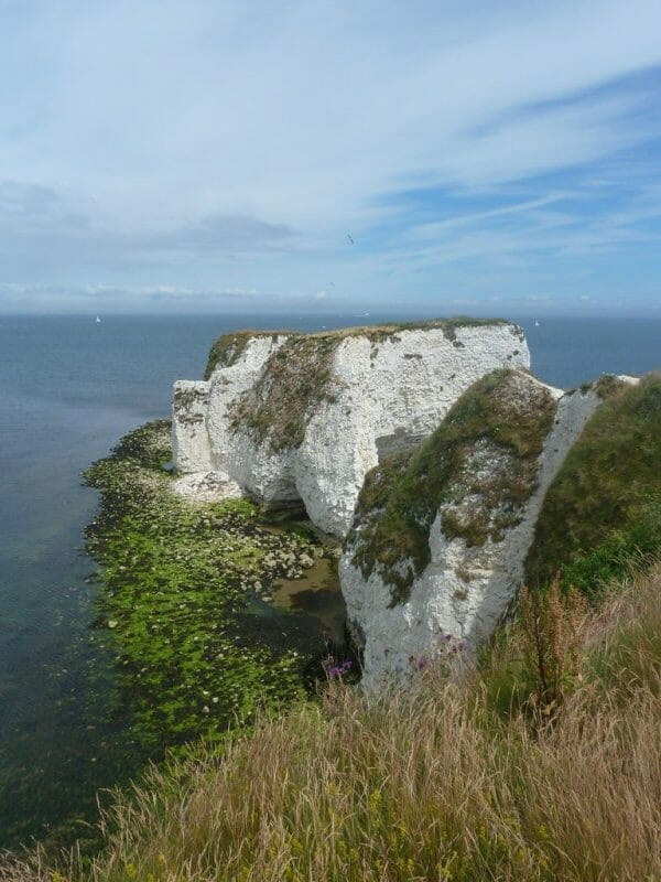 Old Harry Rocks photo