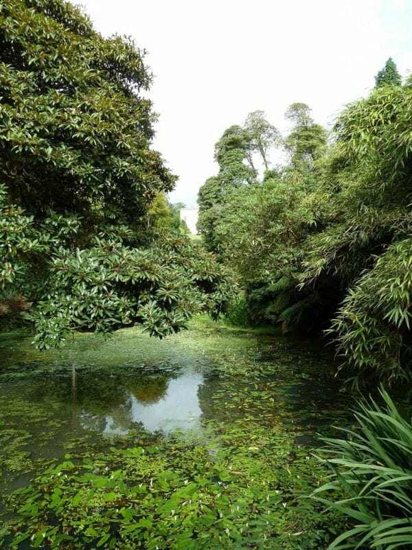 The Lost Gardens of Heligan photo