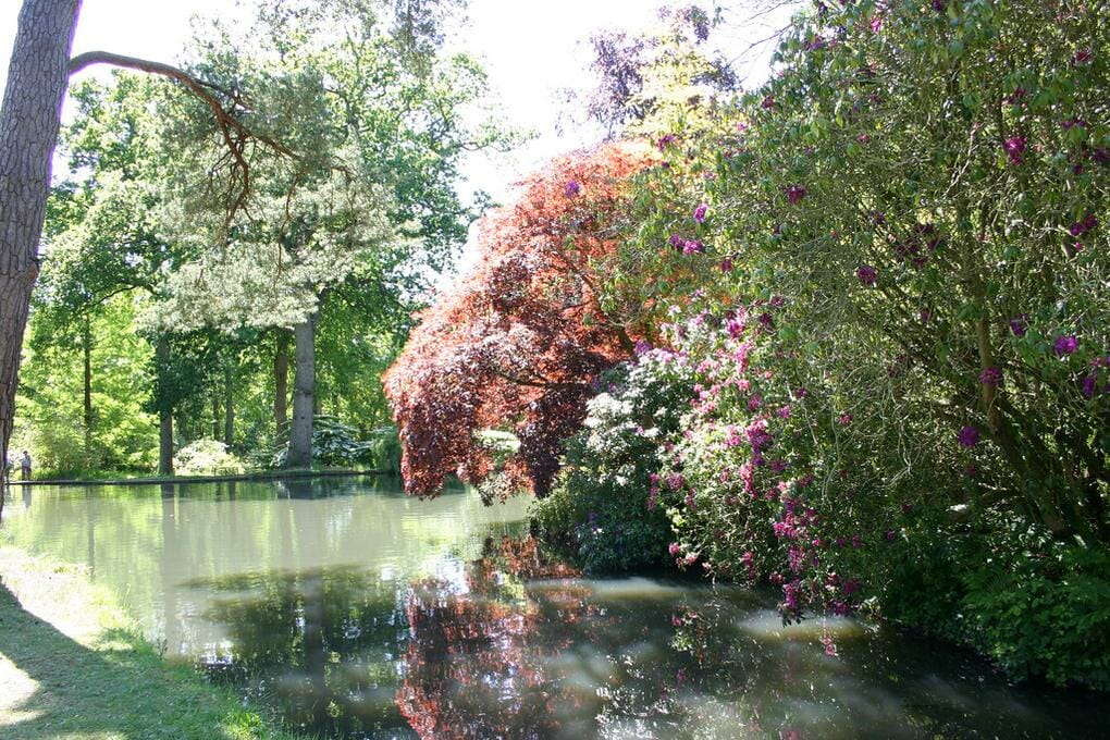 10-great-things-in-new-forest-exbury-gardens