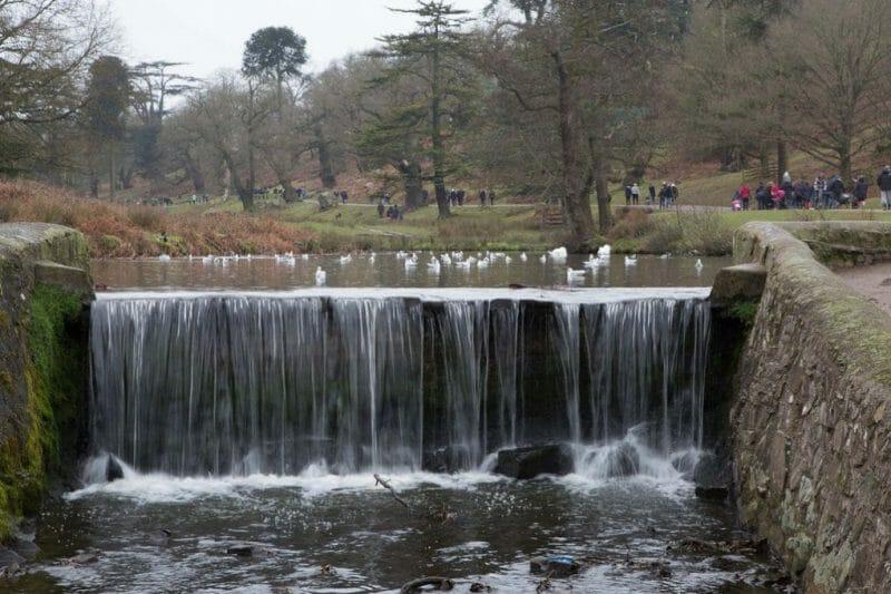 Bradgate Park photo