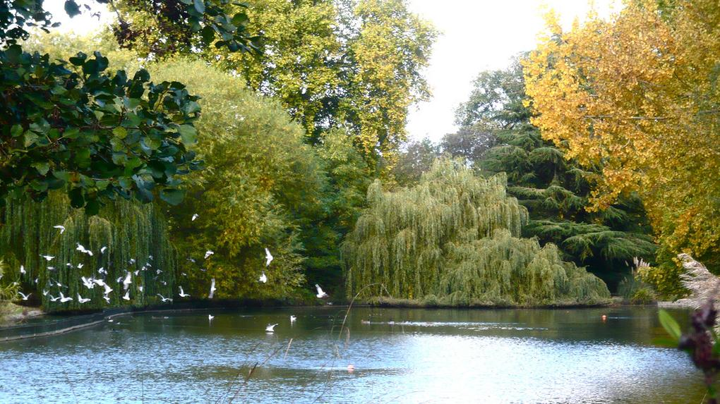 20-best-parks-london-battersea-park