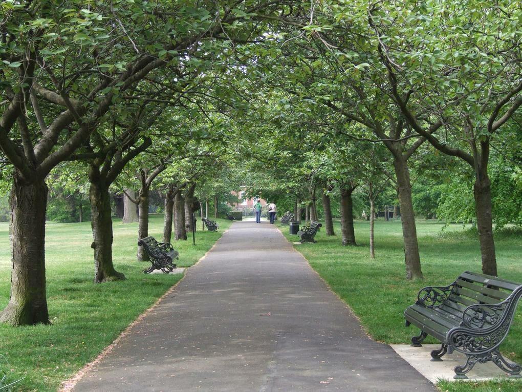 20-best-parks-london-greenwich-park