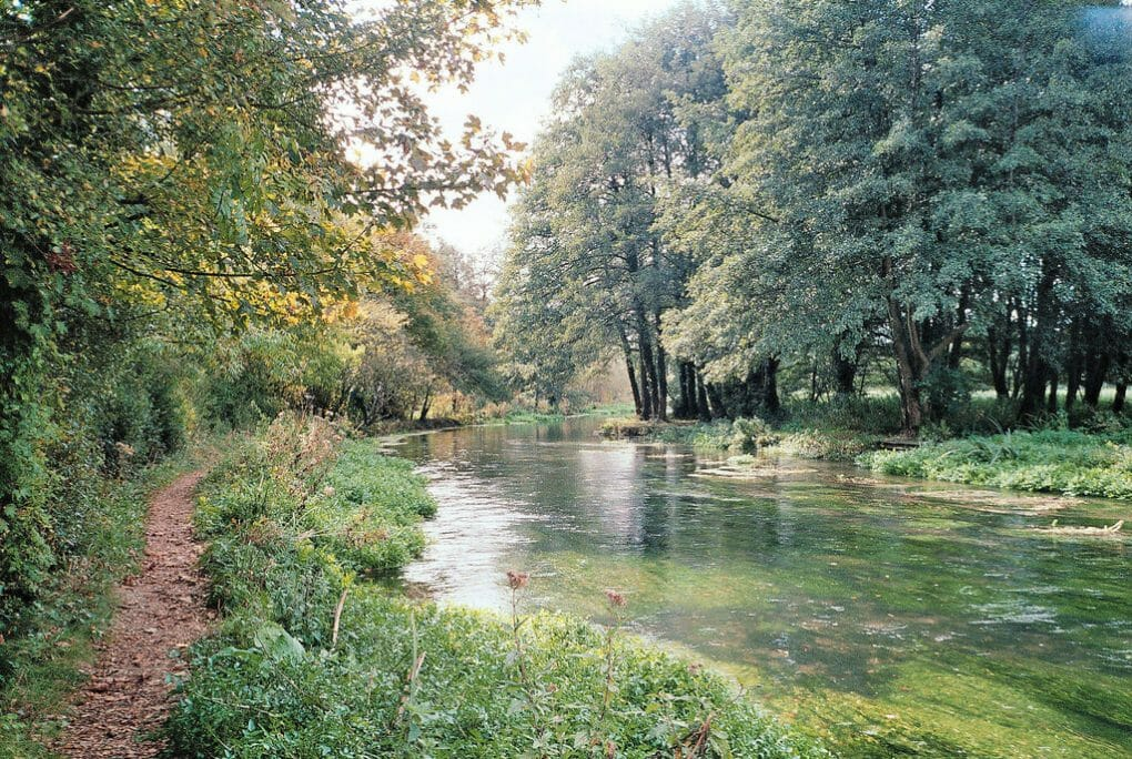 England Rivers: river itchen photo