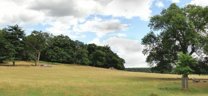 Strange English Place Names: Spankers Hill Wood photo