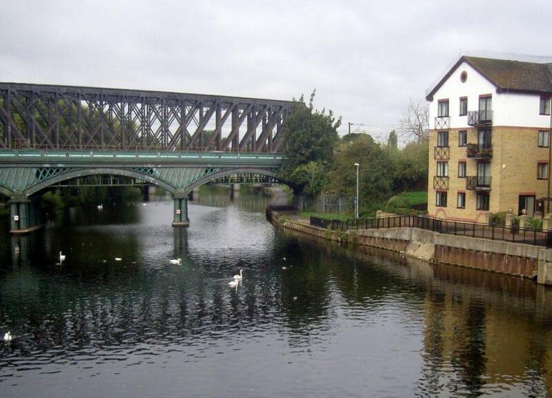 Nene river photo